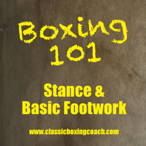 Fundamental Boxing Techniques 1